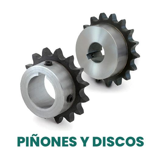 Piñones y discos