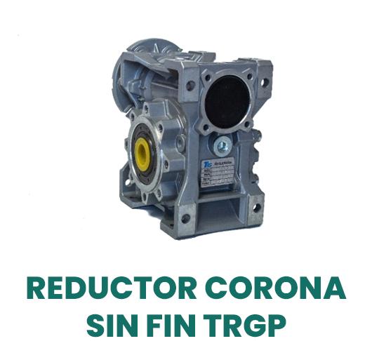 Reductor corona sin fin TRGP